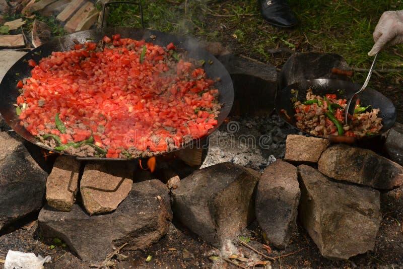 Mięsa i ogienia kebab w wymyśleniu zdjęcie stock