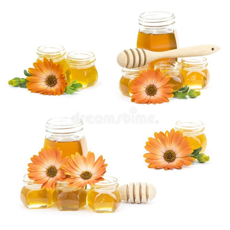 Download Miód i kwiaty obraz stock. Obraz złożonej z jedzenie - 28973903