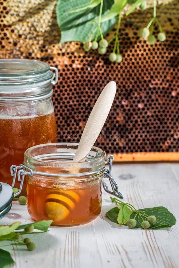 Miód w honeycomb z lipowym drzewem i słoju zdjęcia royalty free