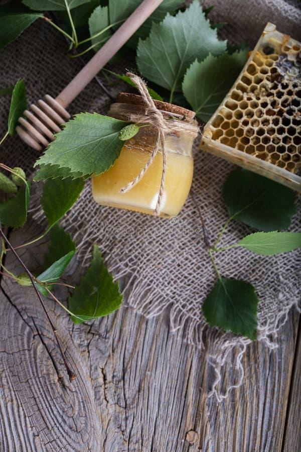 Miód z brzozy barkentyny ekstraktem w szklanej butelce obrazy stock