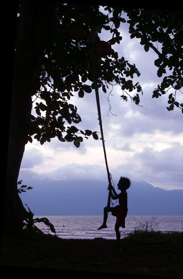 Miúdo na costa de Bornéu do balanço imagens de stock