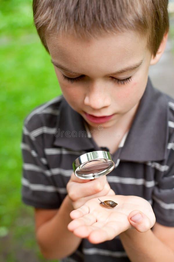 Miúdo observando o caracol imagem de stock