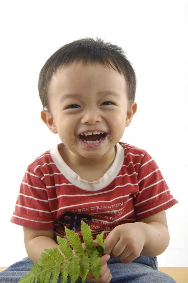 Miúdos asiáticos bonitos imagens de stock