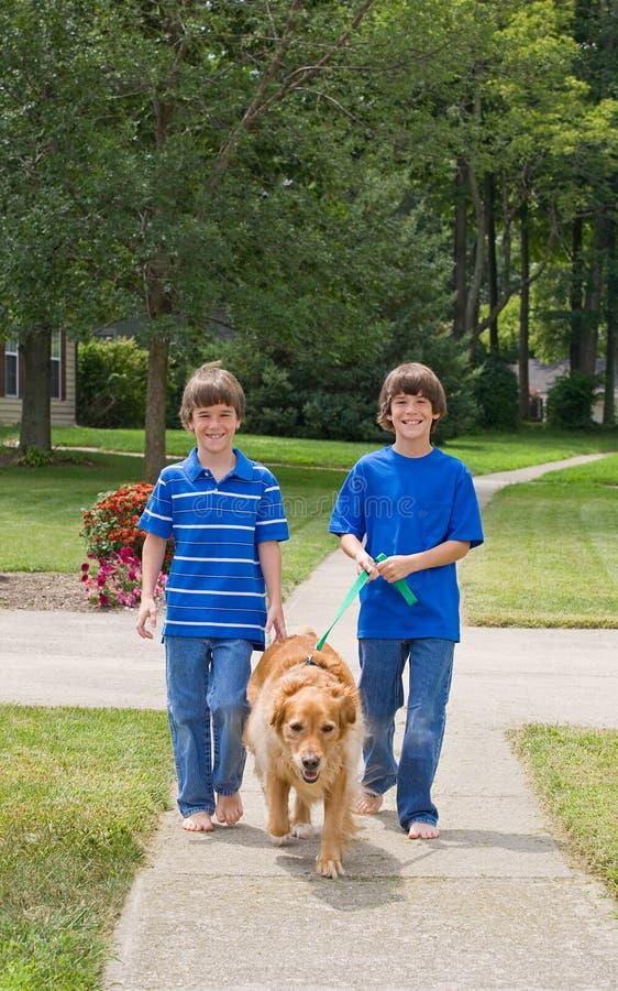 Miúdos que andam o cão fotos de stock