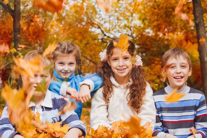 Miúdos que jogam com folhas amarelas imagens de stock