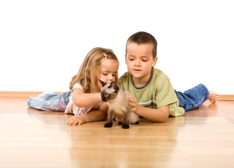 Miúdos que jogam com seu gatinho novo imagem de stock