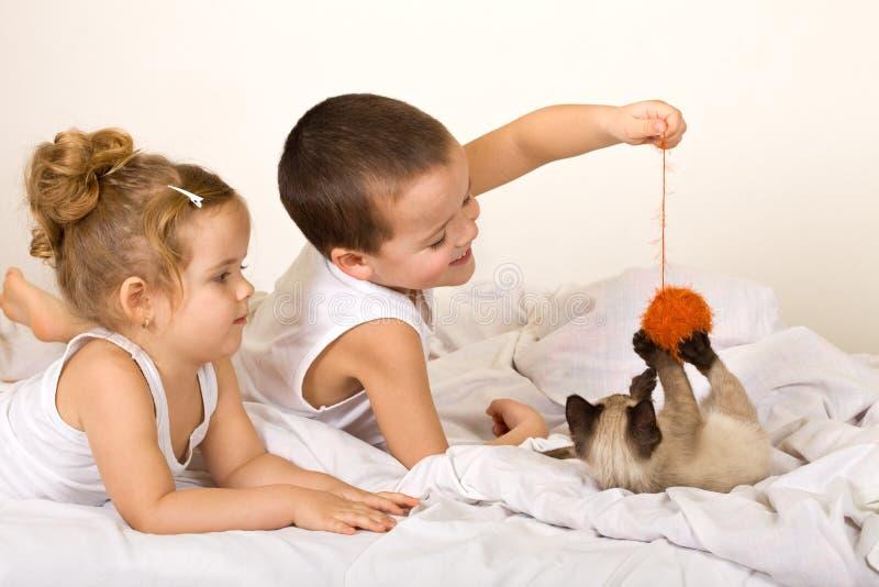 Miúdos que jogam com um gatinho e uma esfera do fio foto de stock royalty free