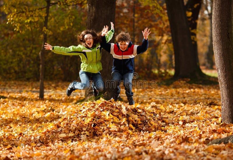 Miúdos que jogam no parque do outono fotos de stock