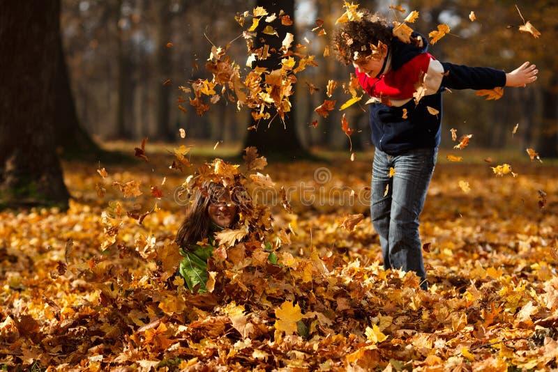Download Miúdos Que Jogam No Parque Do Outono Foto de Stock - Imagem: 23097180