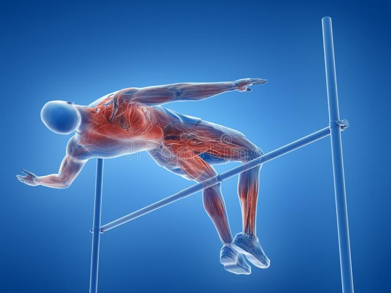 Mięśnie wysoka bluza ilustracja wektor