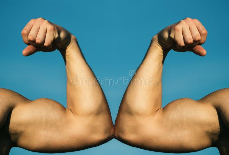 Mięśniowa ręka vs silna ręka Rywalizacja, si?y por?wnanie VS Walka mocno jab?czana poj?cia zdrowie miara ta?my Ręka, mężczyzna rę zdjęcia royalty free