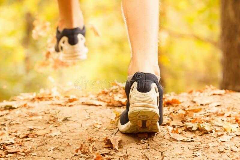 Mięśniowe łydki dysponowany męski jogger szkolenie dla przecinającego kraju lasowego śladu ścigają się zdjęcia stock