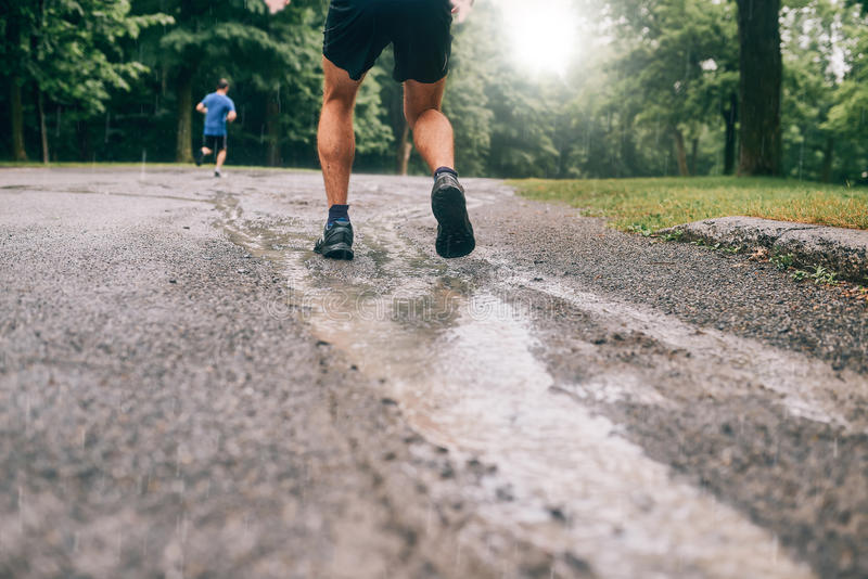 Mięśniowe łydki dysponowany męski jogger szkolenie dla przecinającego kraju lasowego śladu ścigają się w deszczu na natura śladzi zdjęcie royalty free
