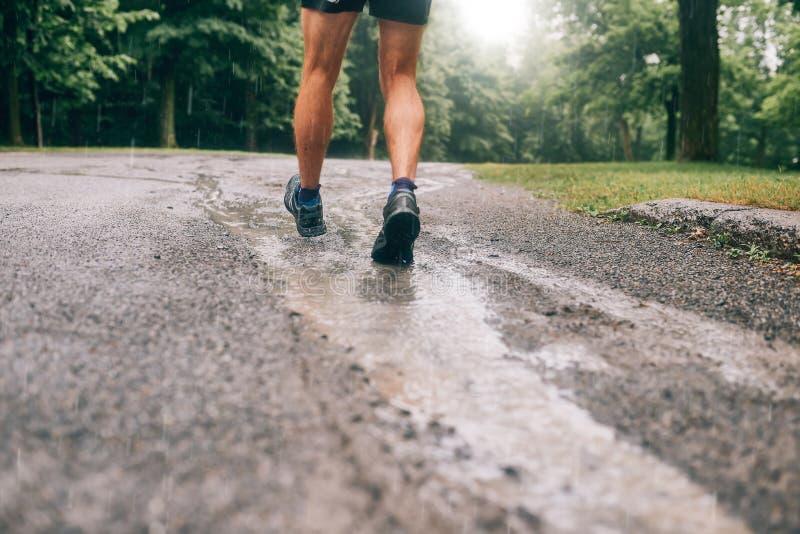Mięśniowe łydki dysponowany męski jogger szkolenie dla przecinającego kraju lasowego śladu ścigają się w deszczu na natura śladzi zdjęcie stock