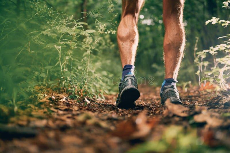 Mięśniowe łydki dysponowany męski jogger szkolenie dla przecinającego kraju lasowego śladu ścigają się w natura parku fotografia royalty free