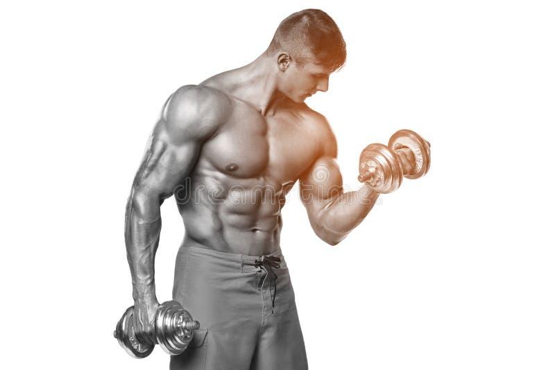 Mięśniowego mężczyzna pracujący out robić ćwiczy z dumbbells przy bicepsami, silny męski abs, odizolowywający nad bielem fotografia royalty free