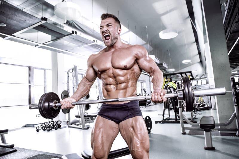 Mięśniowy bodybuilder facet robi ćwiczeniom z dumbbell obraz royalty free
