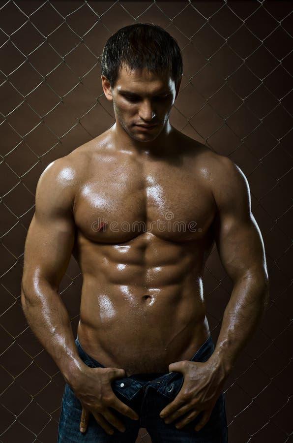 Mięśniowy facet obrazy stock