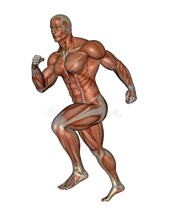Mięśniowy mężczyzna bieg - 3D odpłacają się ilustracji