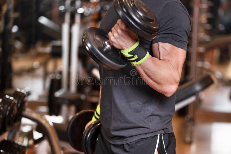 Mięśniowy mężczyzna opracowywa w gym robi ćwiczeniom z dumbbells przy bicepsami, silna samiec fotografia royalty free