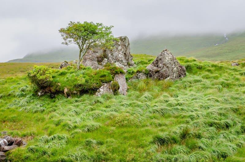 Między skałą i miejscem wśród Delphi doliny blisko Leenane, Connemara, Co galway Ireland zdjęcie royalty free