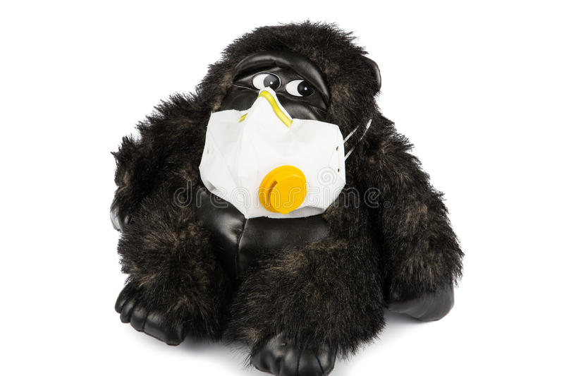 Miękka część goryla zabawkarska choroba jest ubranym grypy maskę zdjęcia royalty free