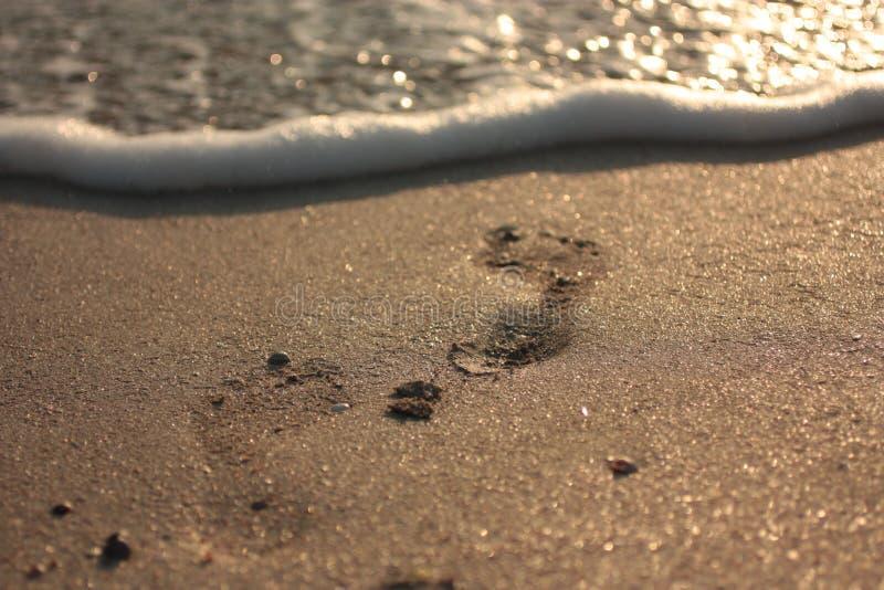 Miękkiej części fala błękitny ocean na piaskowatej plaży Tło fotografia royalty free