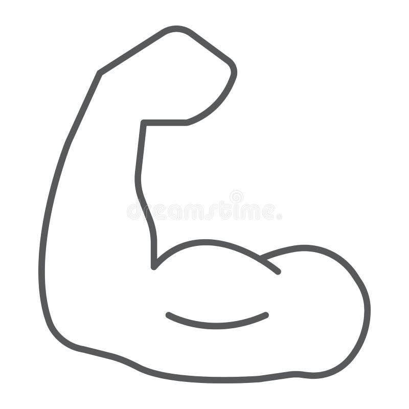 Mięsień cienka kreskowa ikona, bodybuilding i sport, władza znak, wektorowe grafika, liniowy wzór na białym tle ilustracja wektor