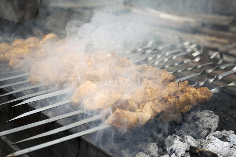 Mięso kucharzi na gorących węglach w dymu Pinkin w naturze zdjęcie royalty free