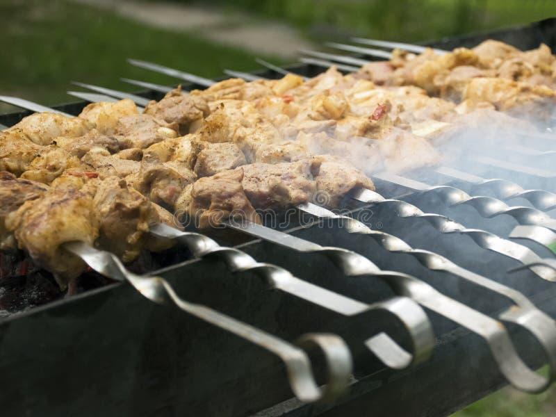 Mięso kucharzi na gorących węglach w dymu Pinkin w naturze obrazy royalty free