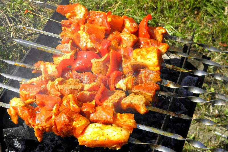 Mięso na skewers w grillu w grillu zdjęcie royalty free