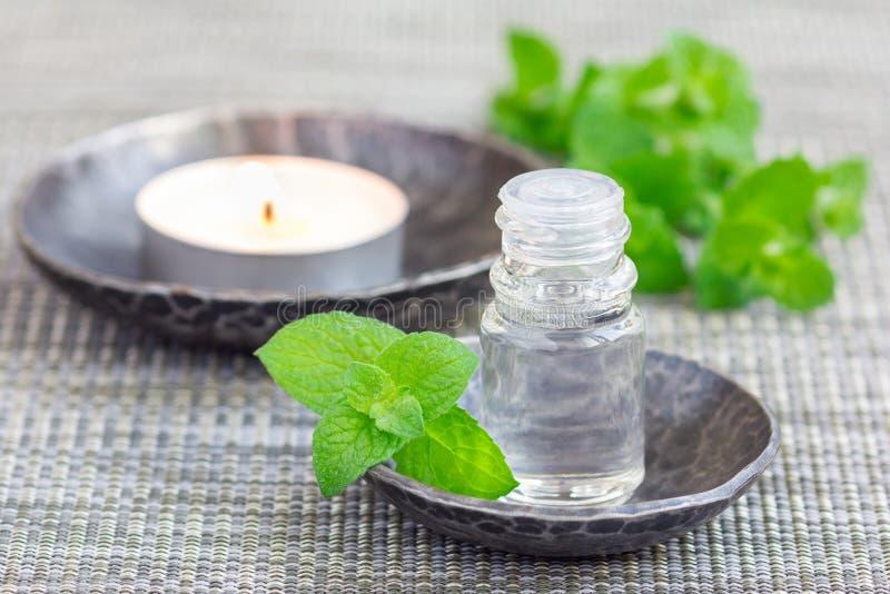 Miętówka istotny olej w szkle na szarość matuje z zdroju tłem zdjęcia stock