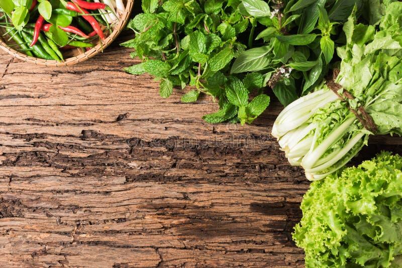 Miętówka, słodki basil, sałata i chili na drewnianym tle, obraz royalty free