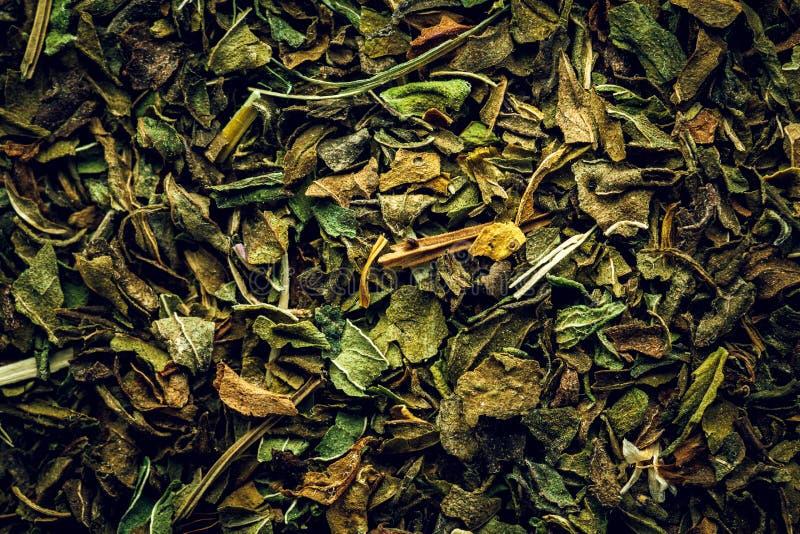 Miętowy herbaciany makro- tło obrazy royalty free