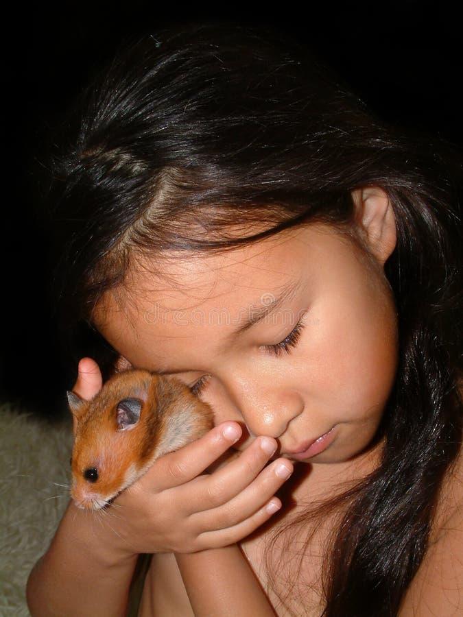 Miłość dla zwierzę domowe chomika zdjęcie royalty free