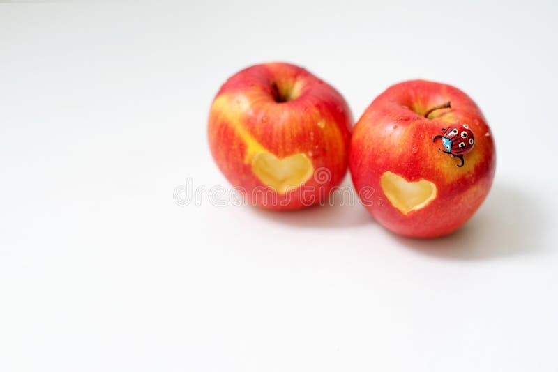 Miłość dwa jabłek pojęcie z starannie naciętym sercem w skórze dojrzały czerwony jabłko na bielu stole obraz royalty free