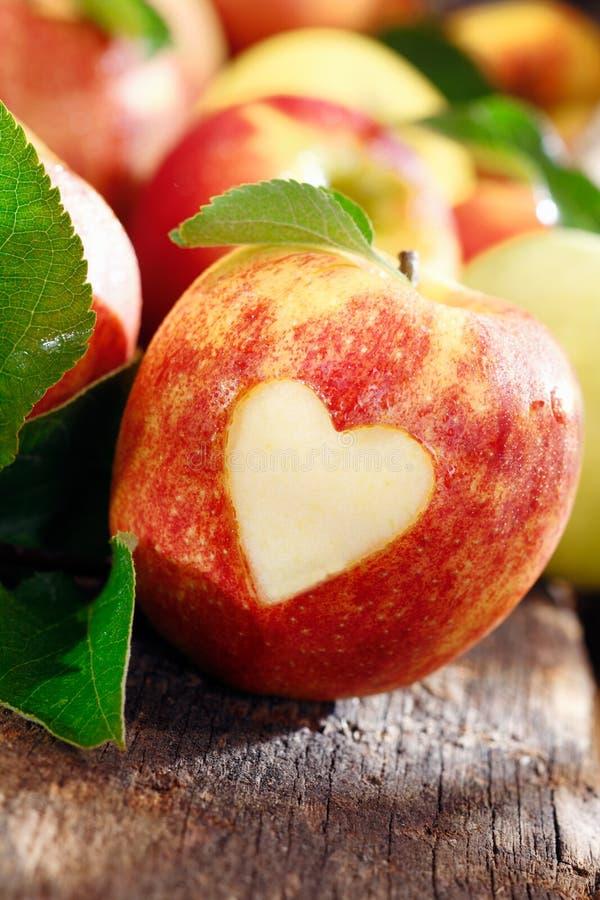 Miłość jabłka pojęcie obraz royalty free
