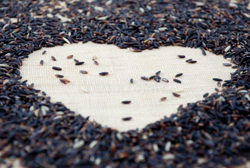 Miłość jest (jaśminowi ryż) obraz stock