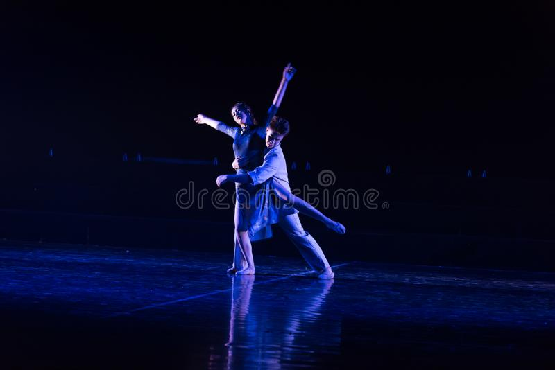 Miłość kompan 3--Tana dramata osioł dostaje wodnym zdjęcie royalty free