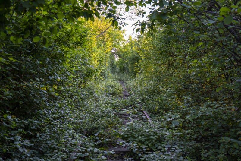 Miłość tunel krawędź droga zaniechany pociąg wykłada zdjęcie royalty free