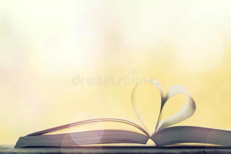 Miłość, valentine ` s dzień lub czytelniczy pojęcie z serce kształtującą książką, fotografia royalty free