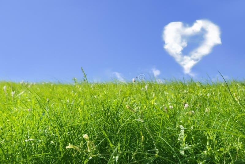 miłość wszędzie zdjęcia stock
