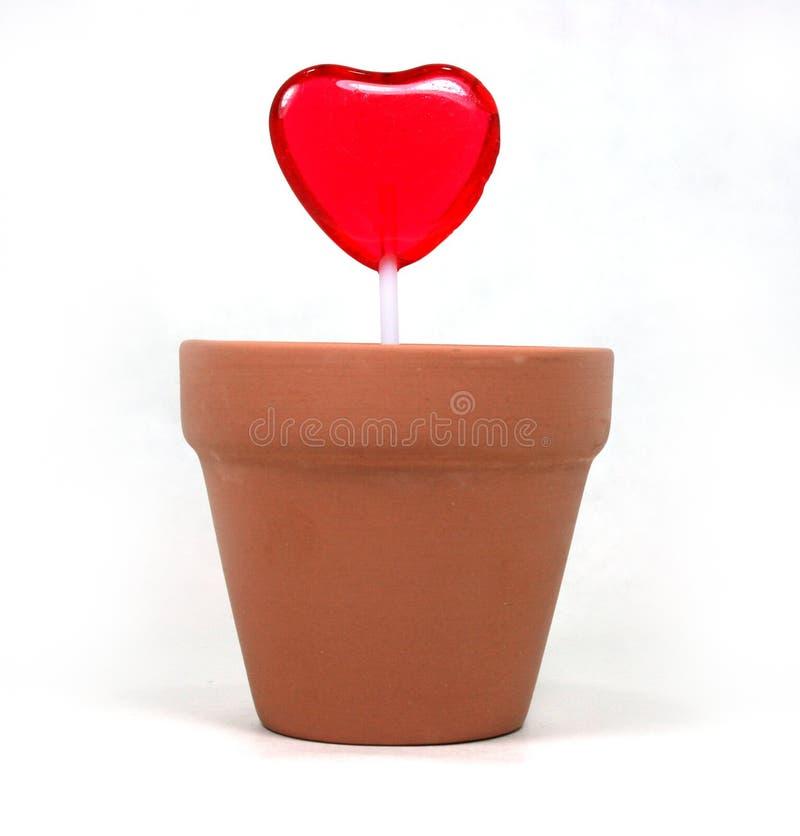 miłość z serca zdjęcie stock