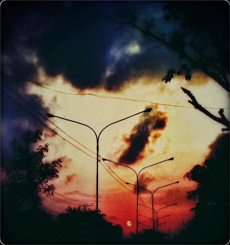 miłości natura zdjęcie royalty free