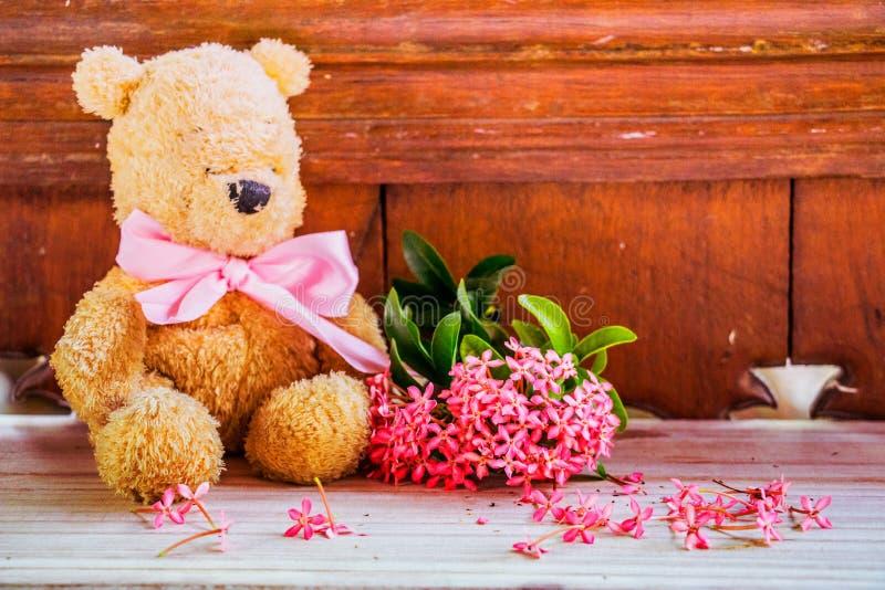 Miś z menchia kwiatem z miękkim skutkiem zdjęcia royalty free