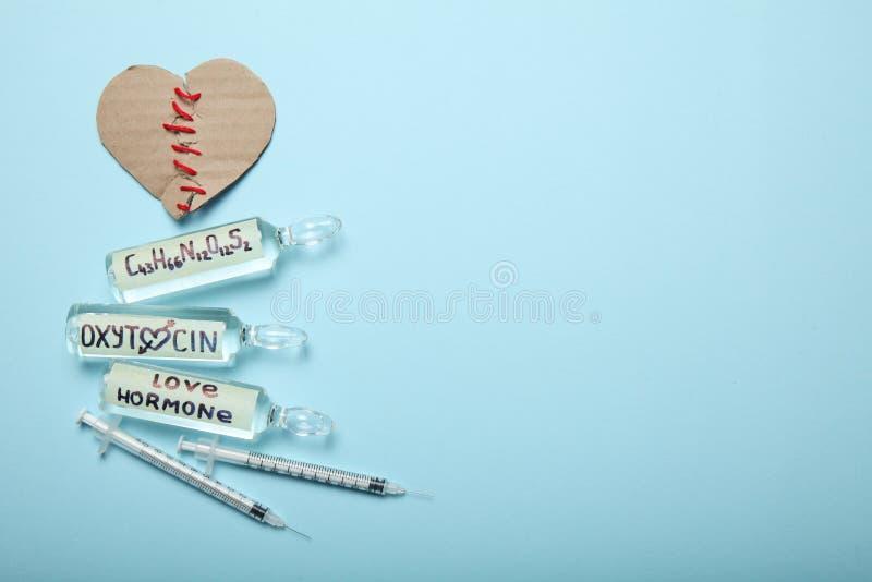 Mi?o?? hormonu nauka Biochemii poj?cie z?amane serce Odbitkowa przestrze? dla teksta obraz stock