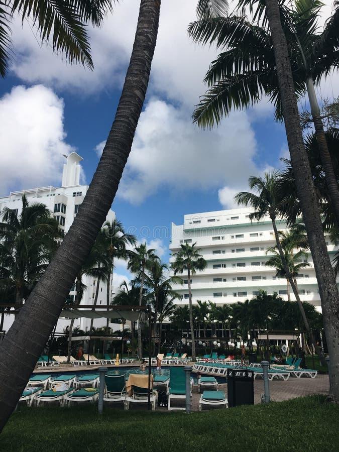 Miami beach obrazy stock