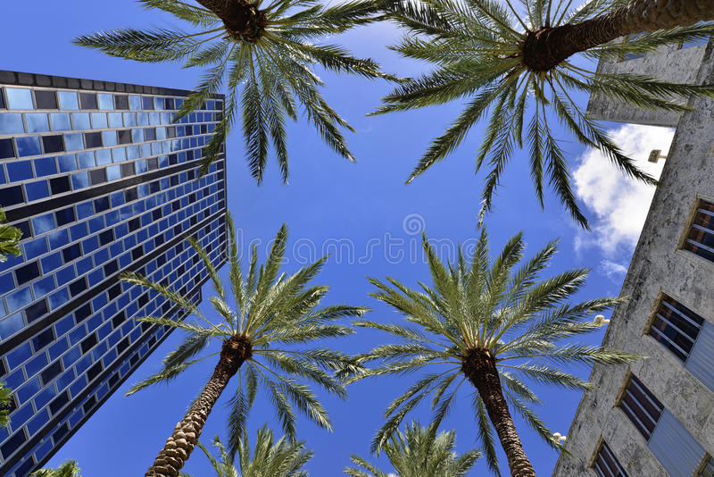 Miami Beach stockbilder