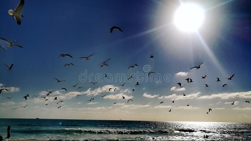Miami Beach stock photography