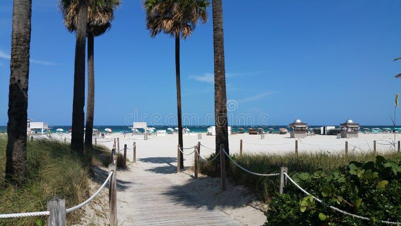 Miami Beach, Florida. Image taken at Miami Beach, Florida, USA royalty free stock images